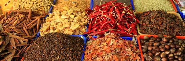 Epices et condiments dans les recettes et les mets de la - Cuisine de la rome antique ...