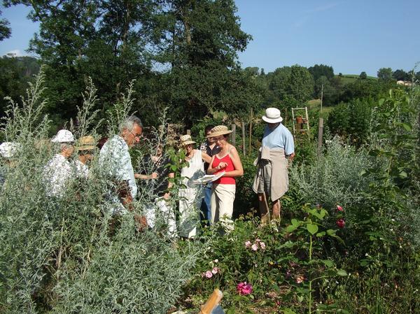 Implanté sur un site naturel de 2500 mètres carré, ce jardin réunit une centaine de plantes tinctoriales telle que la garance, la gaude ,le pastel, la camomille des teinturiers